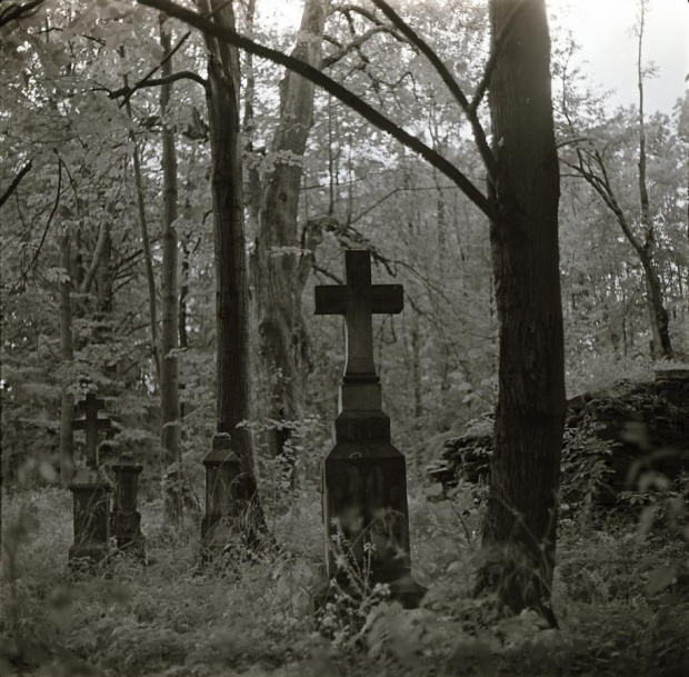 Cmentarz w Króliku Wołoskim
