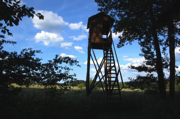 Wieża myśliwska