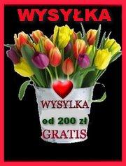 DZIS ZAKUPY OD KWOTY 200 Z� WYSY�AMY GRATIS