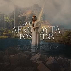 Afrodyta Ponętna