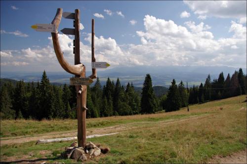 Gorce - szlak na Turbacz